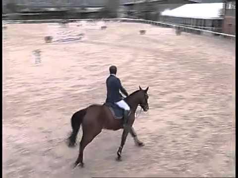 Quaik 4 anni - Arezzo 2012